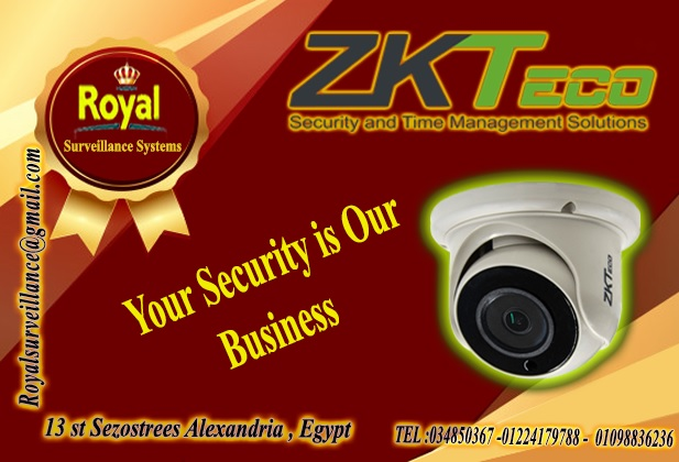الأن أحدث كاميرات مراقبة داخلية  ماركة ZKTECO P_1310qex811